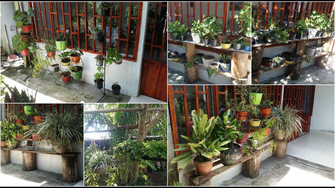 Formas de organizar tus plantas rapido y facil youtube for Decoracion con plantas para exteriores