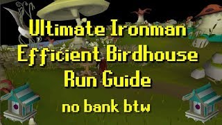 Ultimate Ironman | Efficient Birdhouse Run Guide