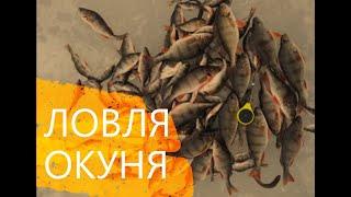 Ловля КРУПНОГО ОКУНЯ Кировский затон Спасский затон зимняя рыбалка последний лед