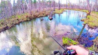 Магия бобриного посоха .Рыбалка на малых реках весной. Рыбалка на cпиннинг