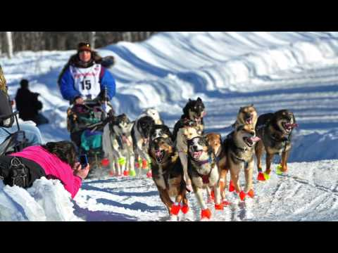 What is the Iditarod? | AK Explained