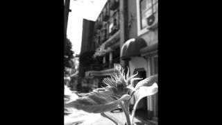 河口恭吾 - 名もなき花よ