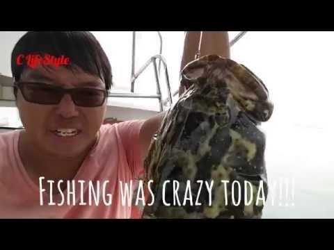 S3E14 Pearl Garoupa Party@Ubin ONZZ Fishing Singapore