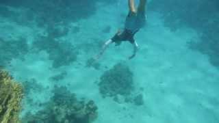 1308.00022 Freediving (Tanja) Thumbnail