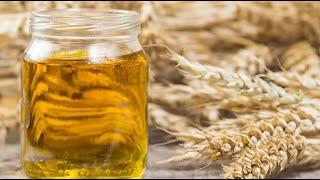 Масло зародышей пшеницы. Купить в фито-аптеке