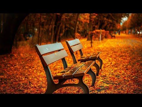Fatih Aybers -Tek Gülüm - Yeni Arabesk Damar Şarkılar 2018 (En Çok Dinlenen Şarkılar)