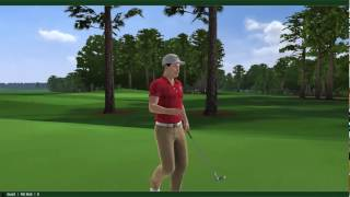 Golf pc game  Tiger woods pga tour 12 gameplay dual core pc mini game clip