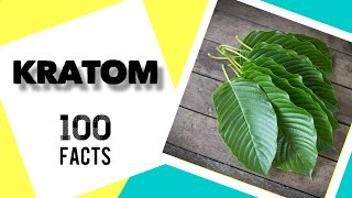 100 Kratom Facts