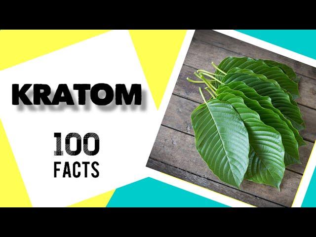 100 Kratom Facts