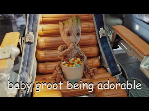 baby groot being