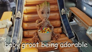 baby groot being adorable