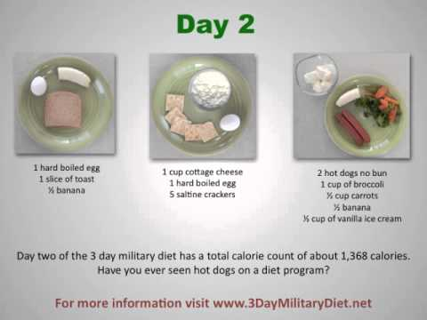 What is The 3 Day Military Diet