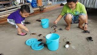Trò Chơi Bé Vui Thi Đua Cùng Anh ❤ ChiChi ToysReview TV ❤ Đồ Chơi Trẻ Em Baby Doli Bài Hát Vần Thơ
