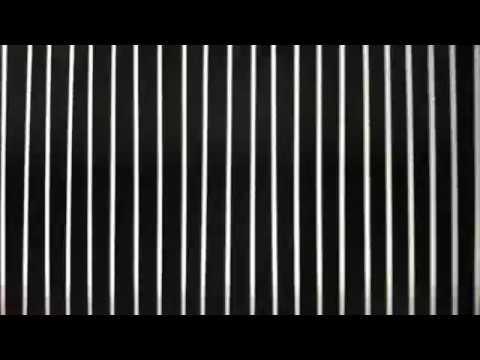 SUPSI ARTS 2018 - Le Désir attrapé par la queue / Video teaser di Govinda Mahadawoo