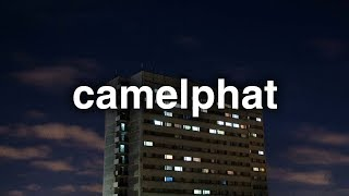 camelphat house dawgs