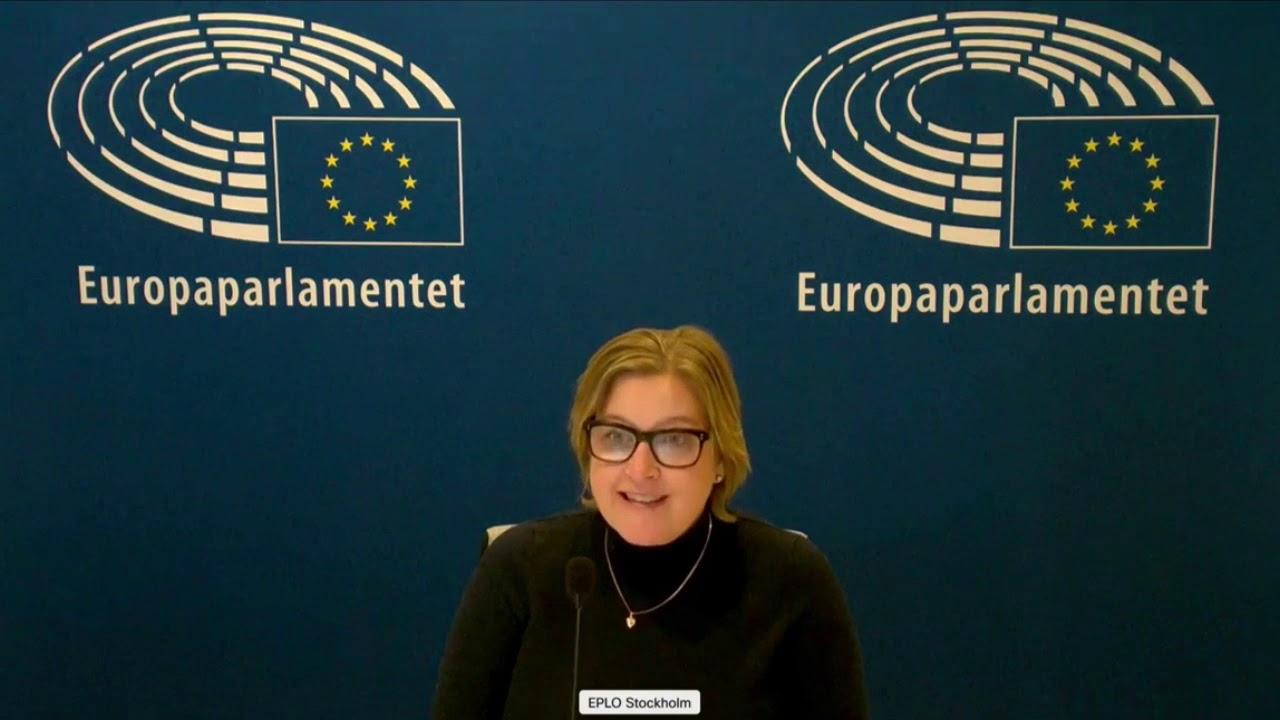 Karin Karlsbro 26 Nov 2020 plenary speech on human rights in Algeria