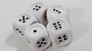 Produktvideo zu Brettspiel für Blinde mit 2 taktilen Spielbrettern & 1 Würfelbecher mit Würfeln taktil