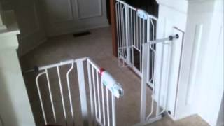 Carlson 0930pw Extrawide Walk-thru Gate With Pet Door