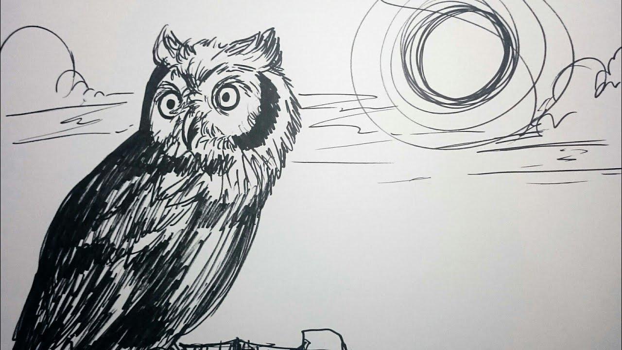 Lukisan Burung Hantu Simple Cikimm Com