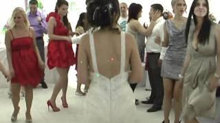 bend za svadbe, muzika za svadbe, bendovi za svadbe / VIVO BAND / 2011. [pop] 1/3 - VIVO BENDOVI