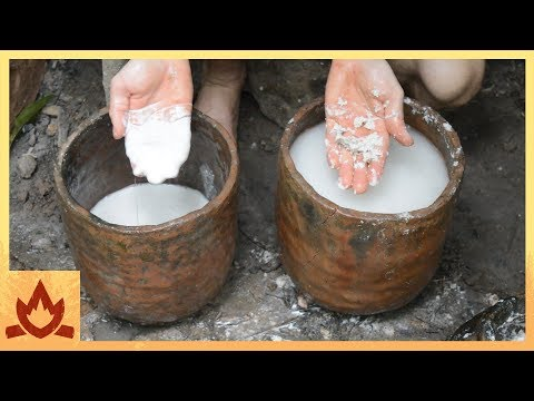primitive-technology:-polynesian-arrowroot-flour