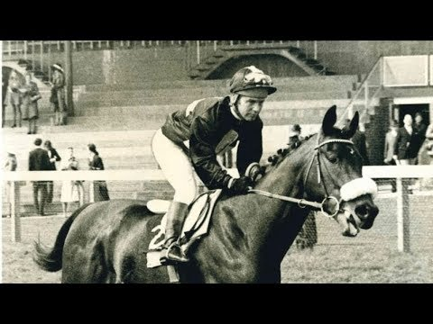 Ian Balding remembers Mill Reef 50 years after the great horse's birth - Part Two