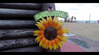 sunflower 현관 거실 인테리어 해바라기 벽장식 …