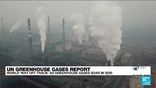 World struggles to curb damage as greenhouse gas levels hit record • FRANCE 24 English