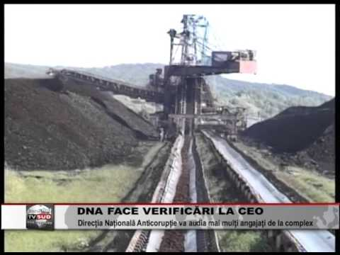 dna face verificari la ceo