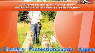 Dog Training Montvale Nj
