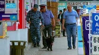 Пошутил о бомбе. На базаре в Бишкеке искали взрывчатку / 16.05.18 / НТС