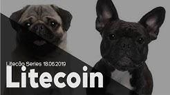 Bitcoin (btc) ou Litecoin (ltc), Qual Vai Render Mais em 2019 e 2020?