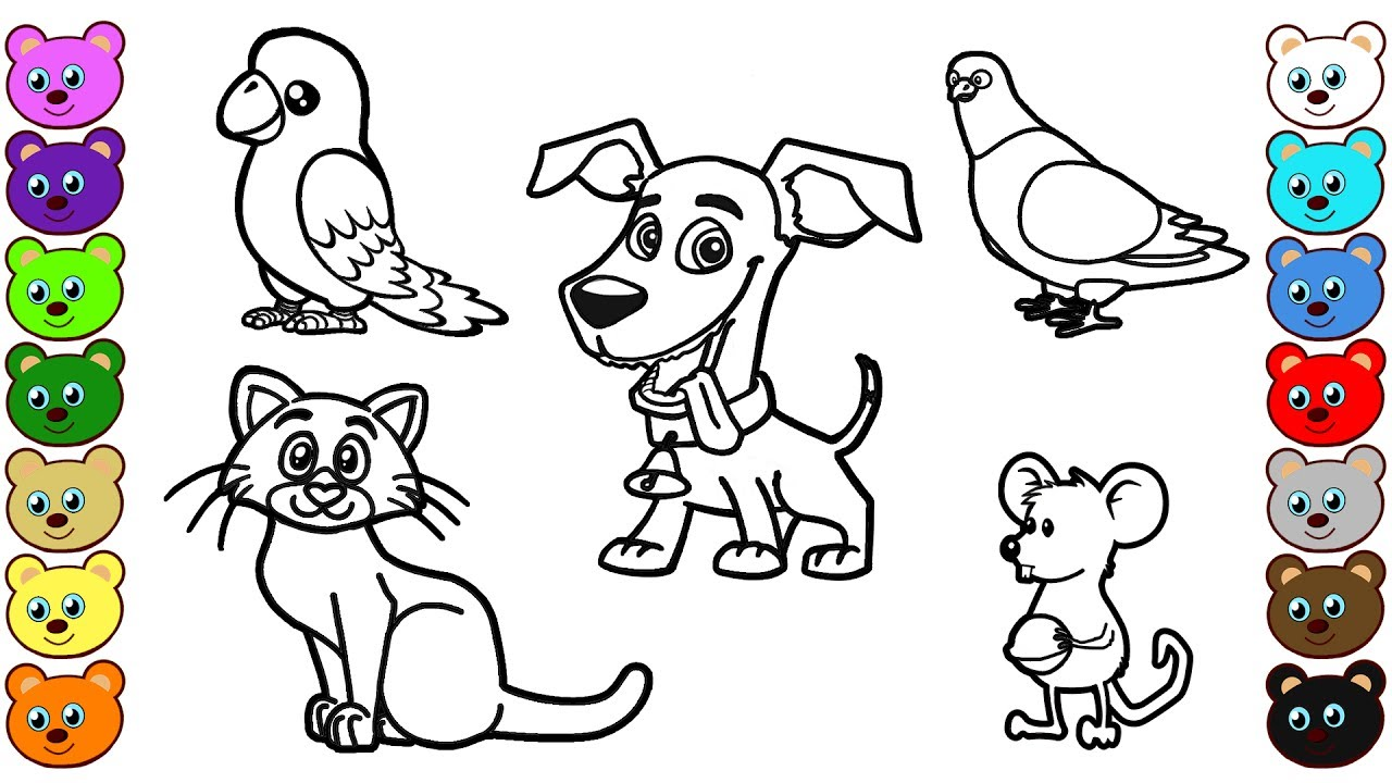 learn colors for kids with home animals coloring pages. Black Bedroom Furniture Sets. Home Design Ideas