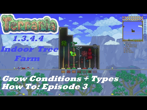 Terraria 1.3.4.4 HOW TO | Build an Indoor Tree Farm + Growing Conditions + Types | Episode 3