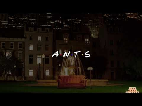 ANTS - The one with the roach