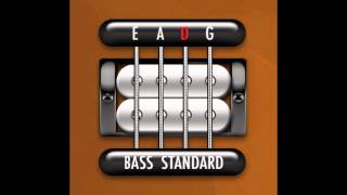 Perfect Guitar Tuner (Bass E Standard)