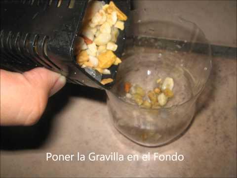 Como hacer un filtro casero para pecera con voz doovi for Como oxigenar el agua de un estanque sin electricidad