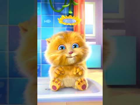 ABC Songs  ABC Songs for Children  Alphabet Songs  Ginger Cat