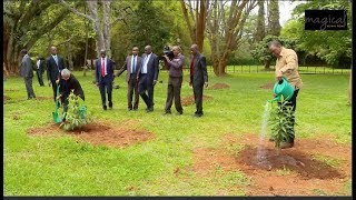 SEE UHURU'S FUN MOMENT AT STATE HOUSE AS HE LEADS STAFF IN PLANTING TREES!