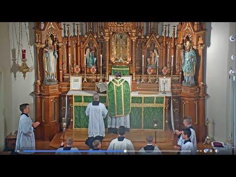 TRADITIONAL LATIN MASS - July 21st, 2019 - St. Mary of Pine Bluff