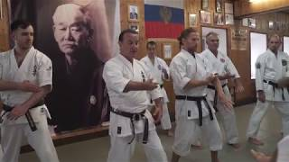 Budo Akademy № 30 Official video / Sensei Dell Hamby  / Uechi ryu karate / Kyusho points