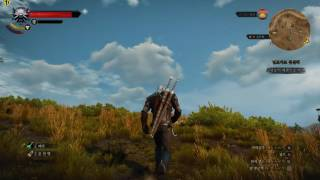 The Witcher 3  970플레이