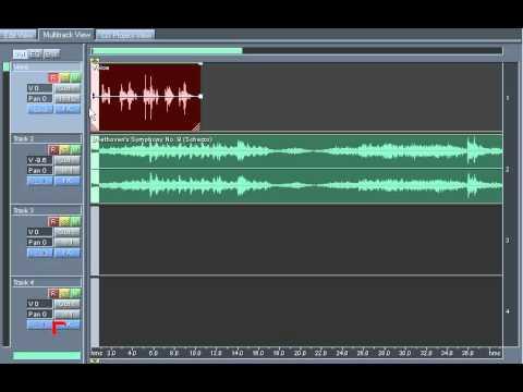 MONO Recording in Multitrack Adobe Audition