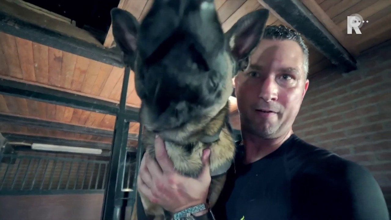 Politiehond Bumper verdwijnt van sociale media