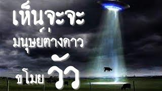 เรื่องจริง โลกตะลึง ตอนที่ 28 : เห็นจะจะ มนุษย์ต่างดาว ขโมยวัว