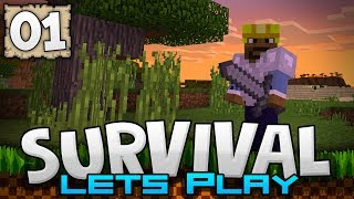 SURVIVING THE FIRST NIGHT! - Survival Let's Play Ep. 01 - Minecraft 1.2 (PE W10 XB1)