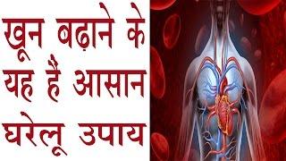 शरीर को स्वस्थ रखने और खून बढ़ाने के यह हैं आसान उपाय | How To Increase Blood In Body In Hindi