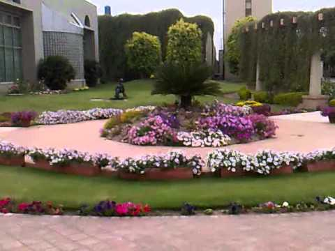 my design garden in season pakistan lahore youtube