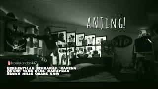 Download STORY WA ANJING - Anteiku Channel