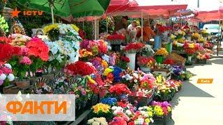 Искусственные цветы и украшения на кладбищах: почему вредны и какие альтернативы